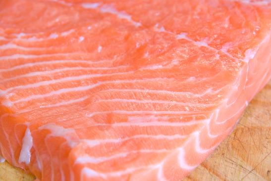 photodune-1090306-salmon-closeup-xs