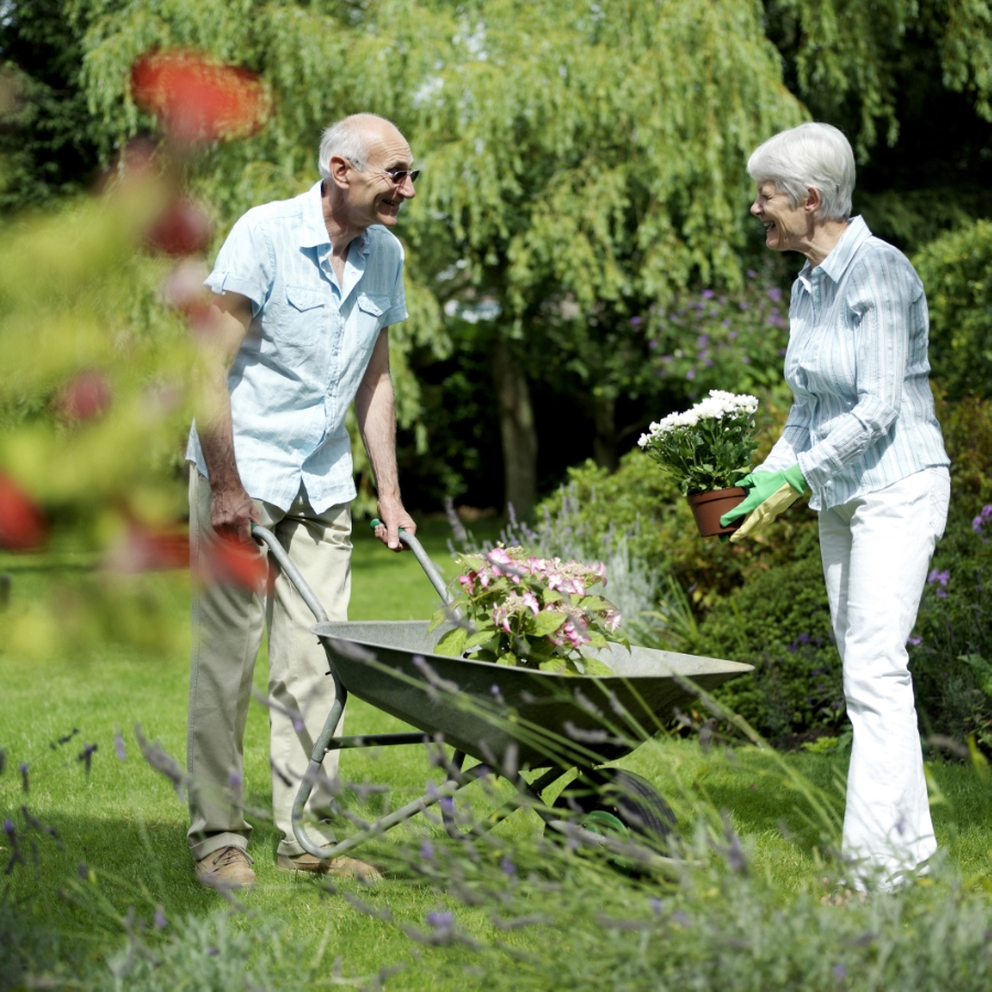 Seniors gardening with joint pain