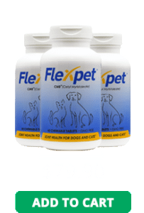 FlexPet Featured CTA